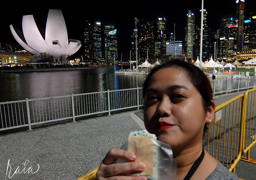 singapore-cityscape-5